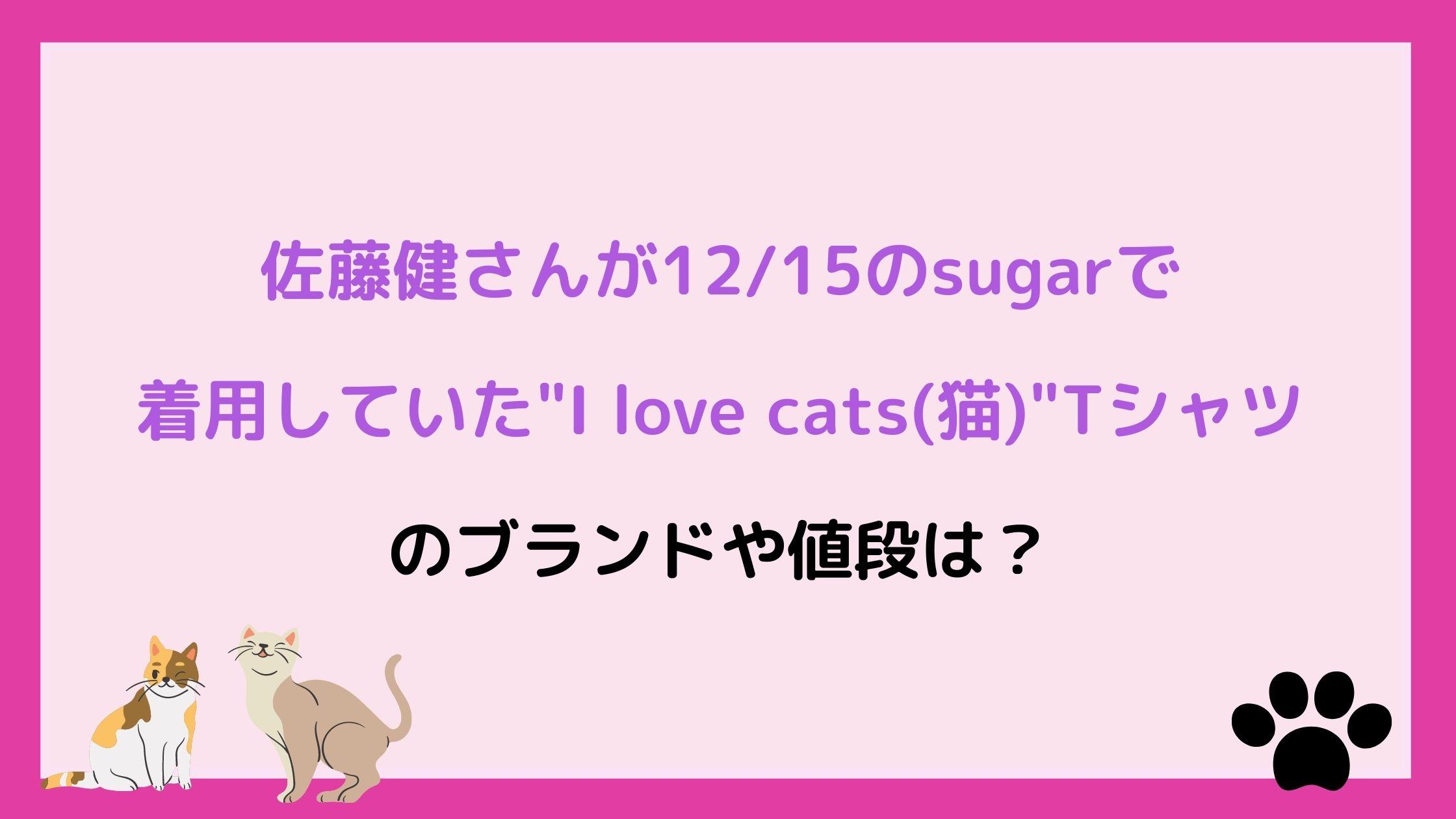 佐藤健さんが12/15のsugarで着用していたI love cats(猫)Tシャツのブランドや値段は?